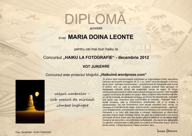 Decembrie 2012 - jurizare M. D. Leonte