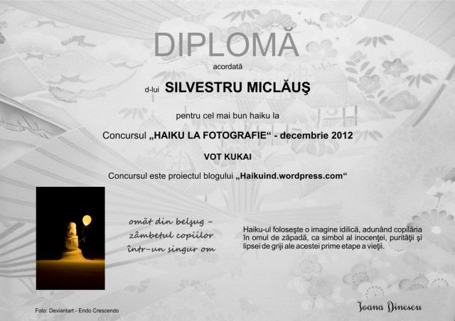 Decembrie 2012 - kukai Silvestru Miclaus