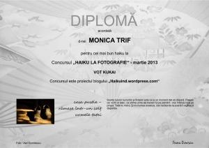 DIPLOMA MONICA TRIF MARTIE 2013 VOT KUKAI
