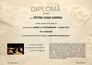 DIPLOMA P.I.GARDA MARTIE 2013 VOT JURIZARE