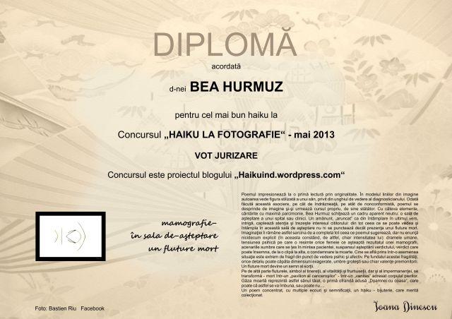 Vot jurizare - Bea Hurmuz