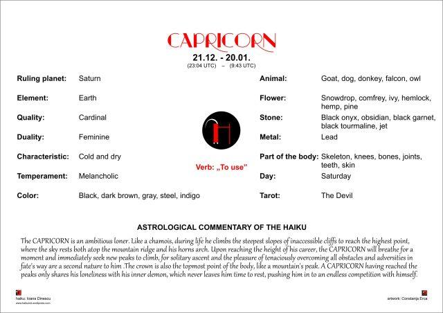 final CALENDAR ASTROHAIKU CAPRICORN EN pg 4 half