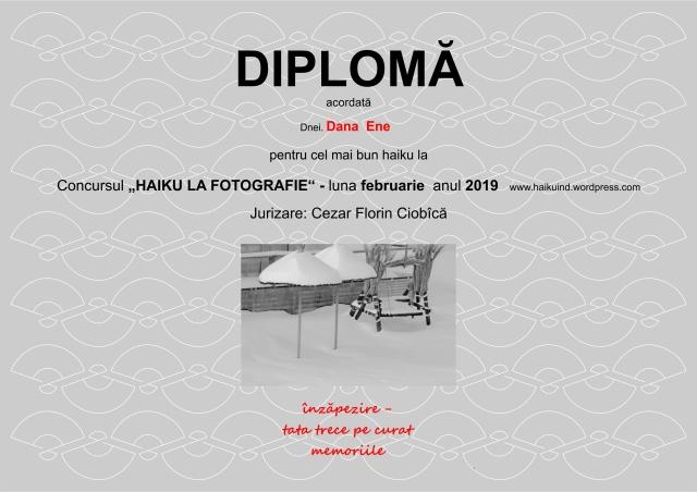 2019 DIPLOMA CONCURS HAIKU Ciobica feb. pg 2
