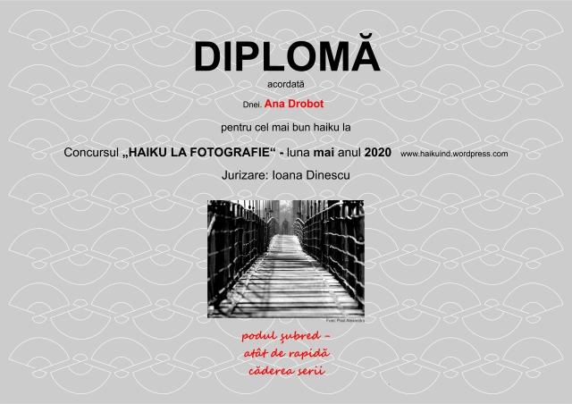 2020 DIPLOMA CONCURS HAIKU mai